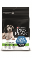 pppuppy largeathletic